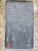 Scimg2768