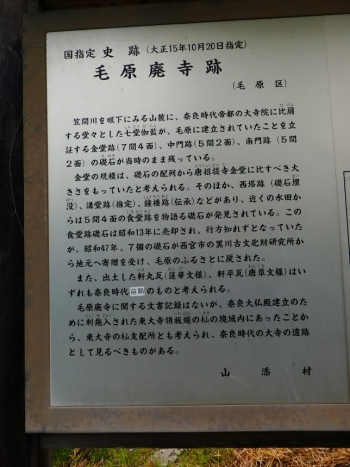 P11006392